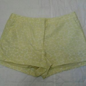 H&M Conscious Collection Green Jacquard Short